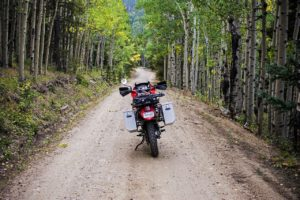 motorcycle on forest path