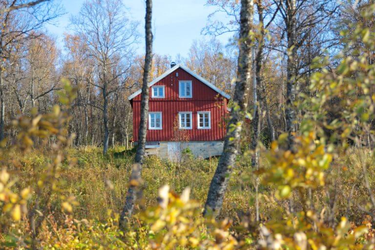 a-red-house-in-the-forest-that-has-been-accident-proofed
