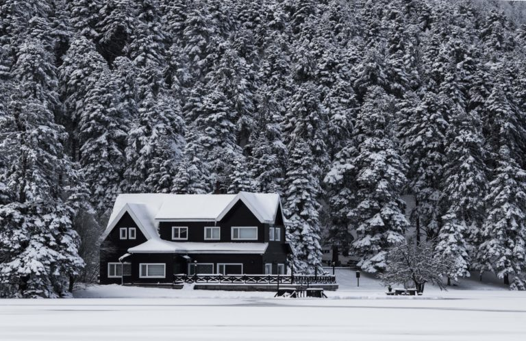 Dark snow-covered house in front of snowy trees